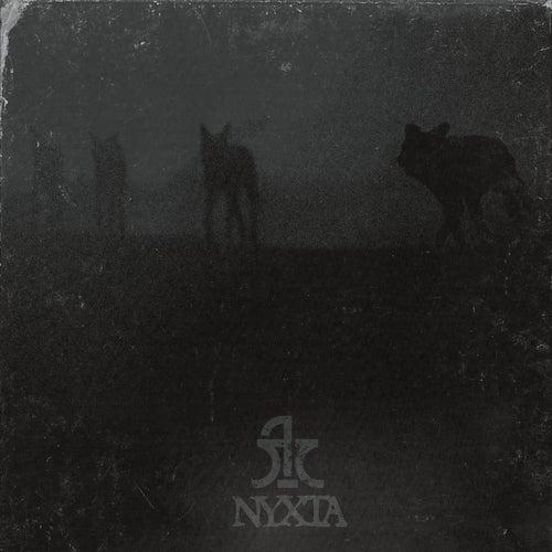 Nixta by Logos Timis