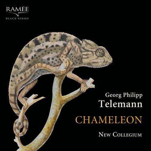 Chameleon by New Collegium