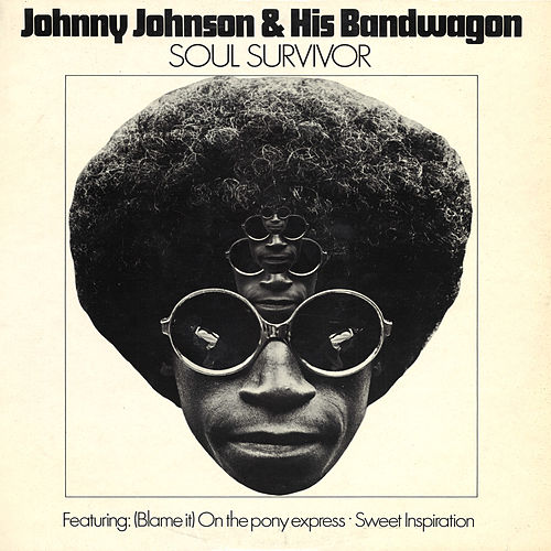 Soul Survivor von Johnny Johnson