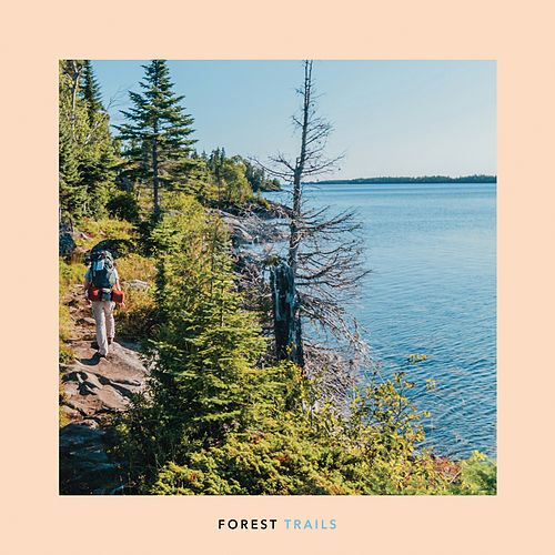 Forest Trails by Windy and Carl