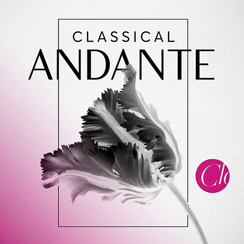 Classical Andante de Various Artists