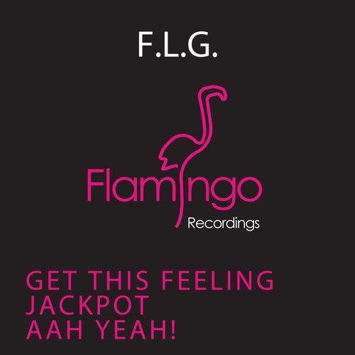 Electronic EP von F.L.G.