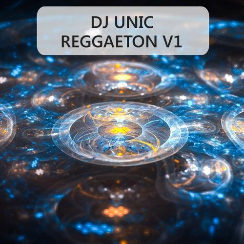 Reggaeton, Vol. 1 (DJ Unic Instrumental Mix) de DJ Unic