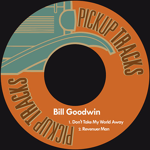 Don't Take My World Away by Bill Goodwin