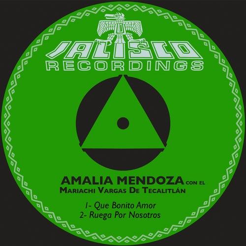 Que Bonito Amor by Amalia Mendoza