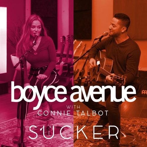 Sucker von Boyce Avenue
