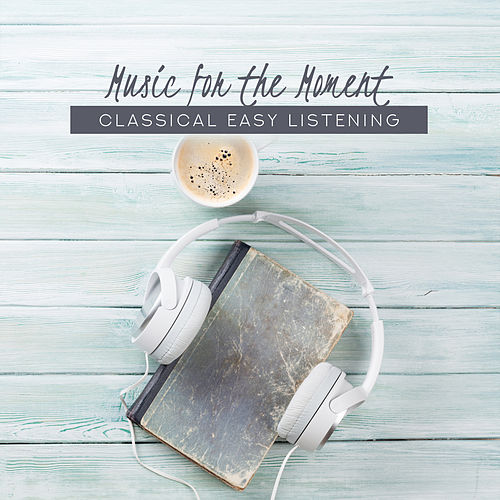 Music for the Moment: Classical Easy Listening de Various Artists