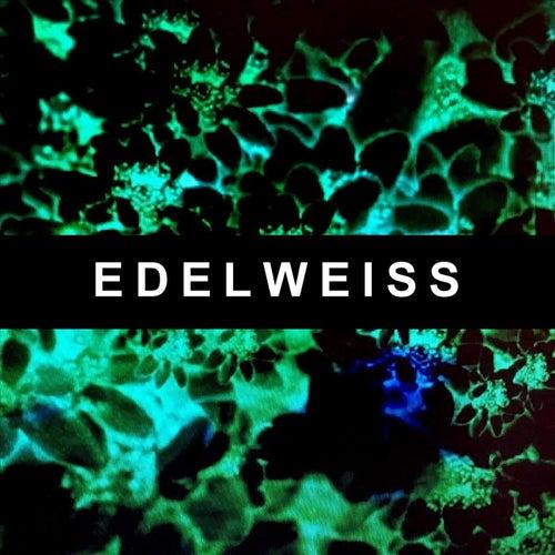 Edelweiss de Sleepy