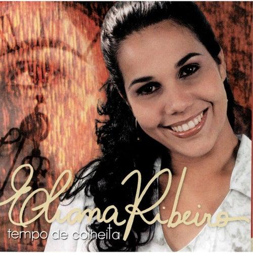 Tempo de Colheita de Eliana Ribeiro