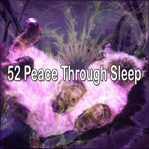 52 Peace Through Sleep by S.P.A