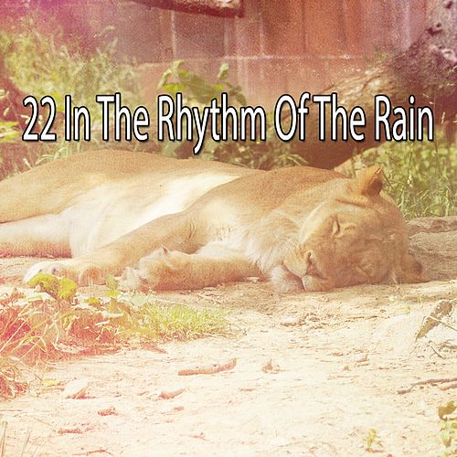 22 In the Rhythm of the Rain by Rain Sounds (2)