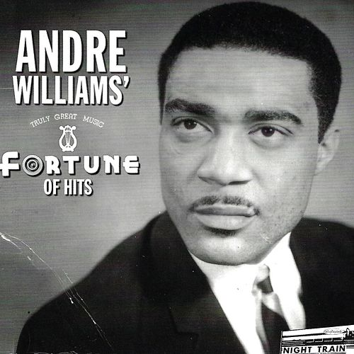 Fortune of Hits (1955-1960) by Andre Williams