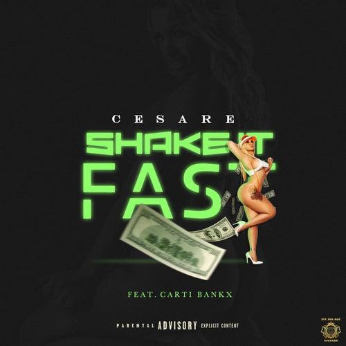 Shake It Fast de Cesare