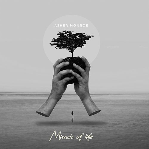 Miracles of Life by Asher Monroe