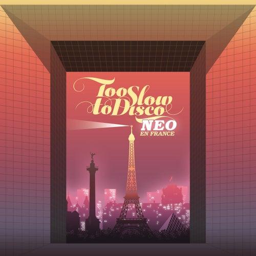 Too Slow to Disco Neo - En France de Various Artists