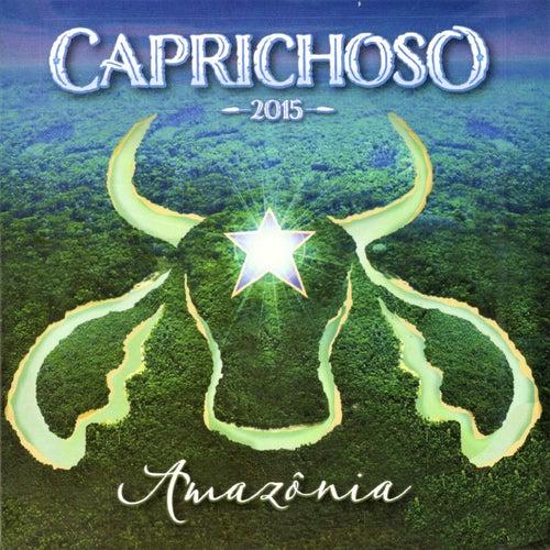 Amazônia (Ao Vivo) de Boi Bumbá Caprichoso