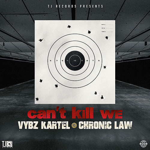 Can't Kill We by VYBZ Kartel