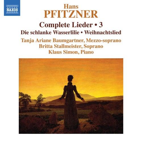 Pfitzner: Complete Lieder, Vol. 3 von Various Artists