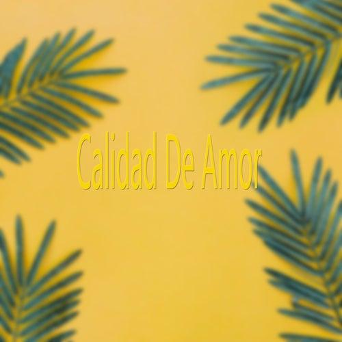 Calidad De Amor de Various Artists