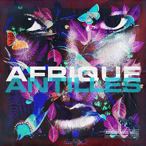 Diaspora Afrique Antilles de Various Artists