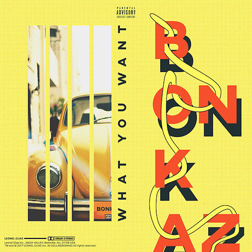 What You Want by Bonkaz