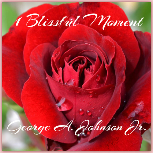 1 Blissful Moment by George A. Johnson Jr.