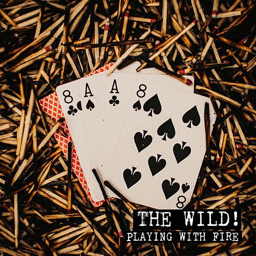 Playing With Fire By Wild