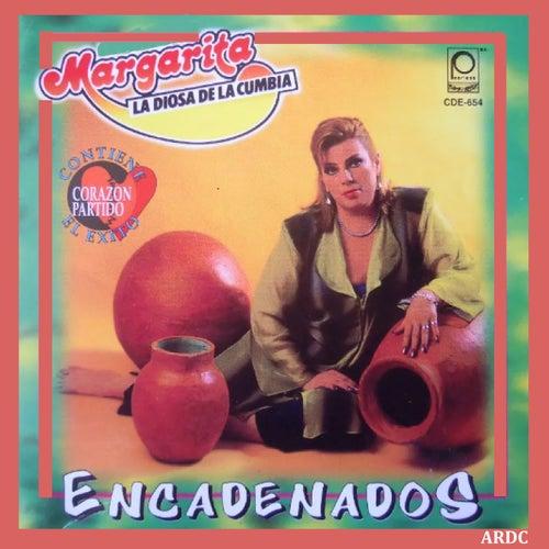 Encadenados de Margarita La Diosa De La Cumbia