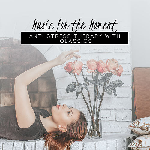 Music for the Moment: Anti Stress Therapy with Classics de Various Artists