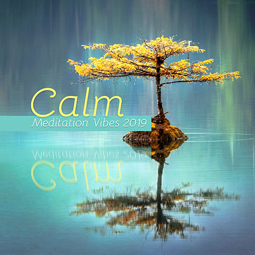 Calm Meditation Vibes 2019: New Age 15 Deep Ambient Songs for Total Inner Relaxation & Yoga Full Focus by Yoga Tribe