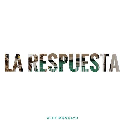 La Respuesta de Alex Moncayo