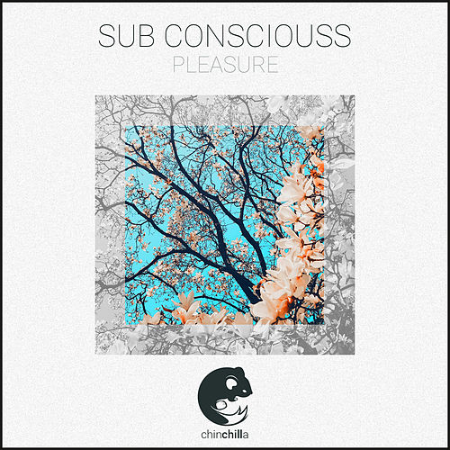 Pleasure by Sub Consciouss