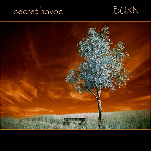 Burn di Secret Havoc