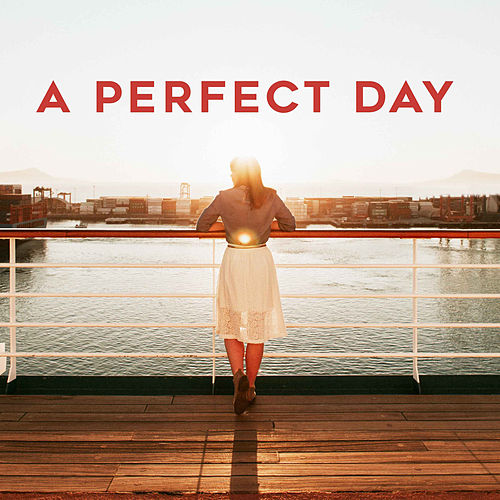 A Perfect Day by Various Artists