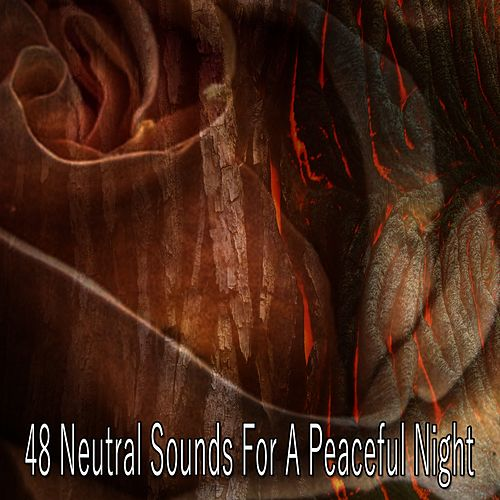 48 Neutral Sounds for a Peaceful Night von Best Relaxing SPA Music