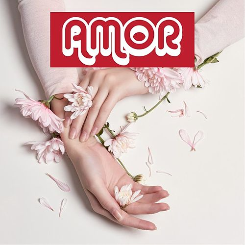 Amor von Various Artists