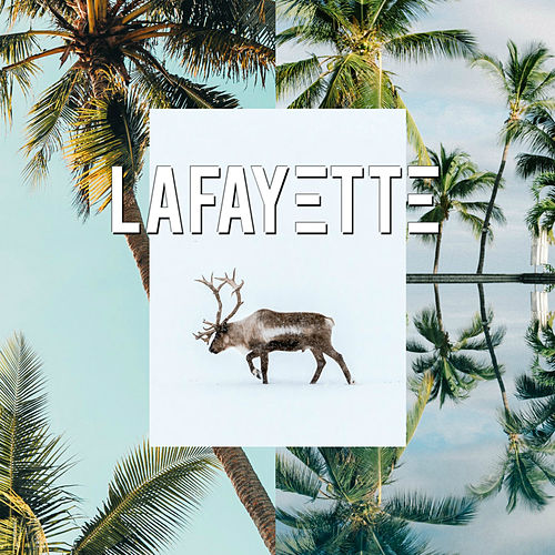 Koa von Lafayette