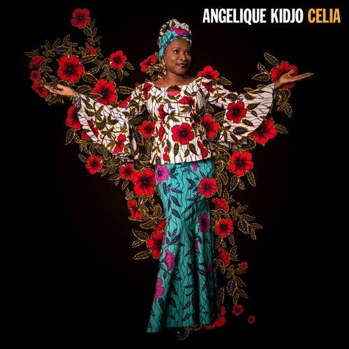 La Vida Es Un Carnaval (Radio Edit) von Angelique Kidjo
