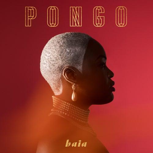 Baia by Pongo