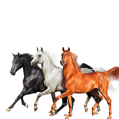 Old Town Road (Diplo Remix) by Lil Nas X
