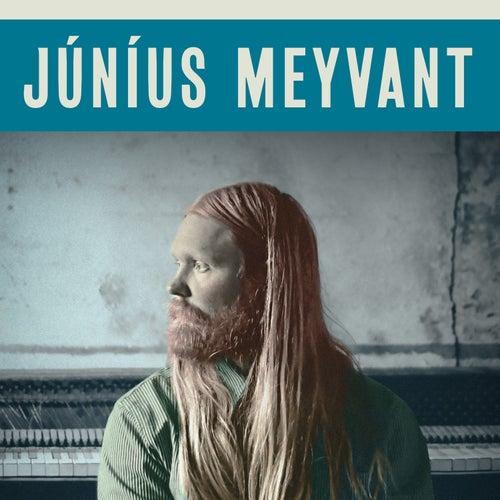 Ain't Gonna Let You Drown by Júníus Meyvant