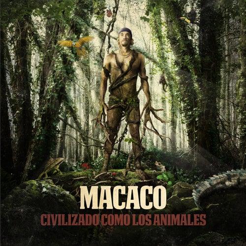 Civilizado Como Los Animales de Macaco