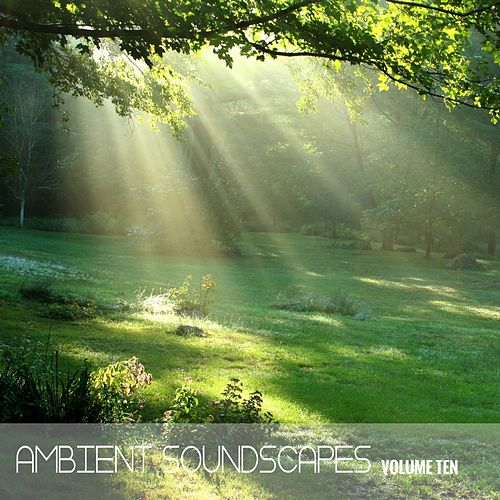 Ambient SoundScapes Vol, 10 by Various Artists