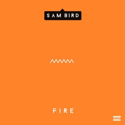 Fire de Sam Bird