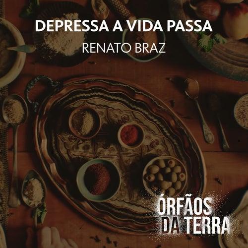 Depressa a Vida Passa de Renato Braz