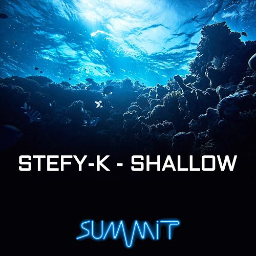 Shallow (Remix Dance) de Stefy K