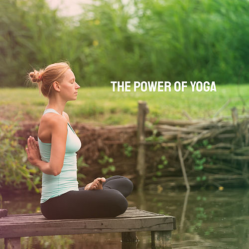 The Power Of Yoga by Various Artists