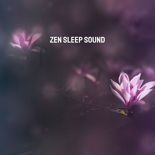 Zen Sleep Sound by Various Artists