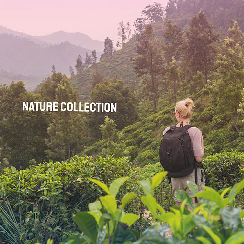 Nature Collection de Various Artists