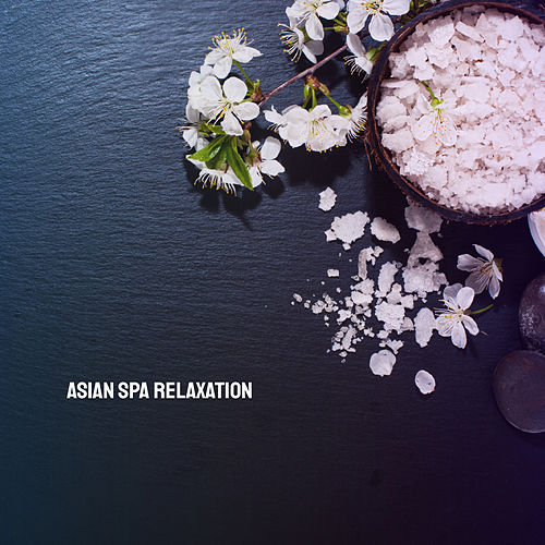 Asian Spa Relaxation by Various Artists